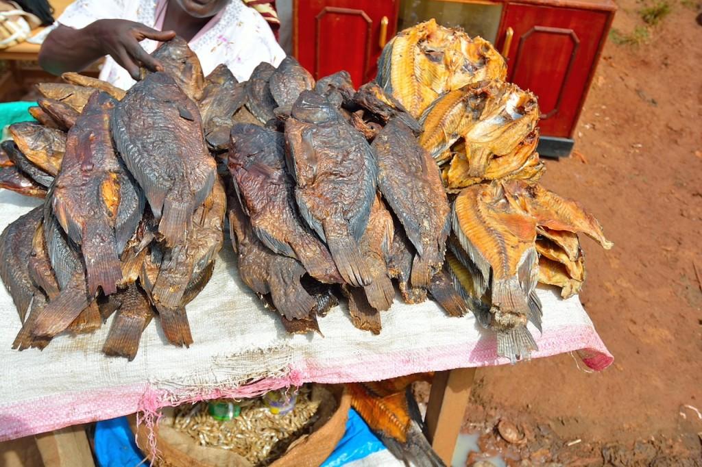 Dried fish for sale in Kibera, Kenya